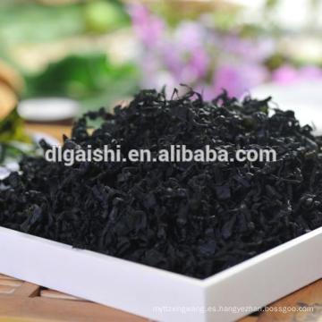 Exportar kosher verde oscuro grado ABC wakame SML tamaño algas secas