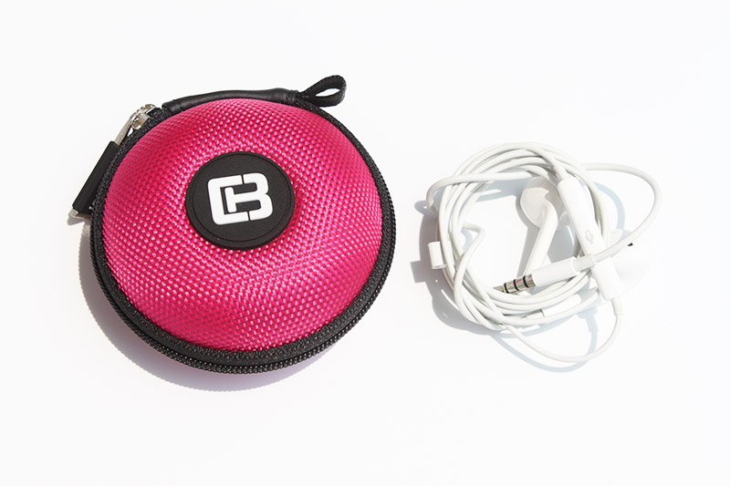 earphone storage case