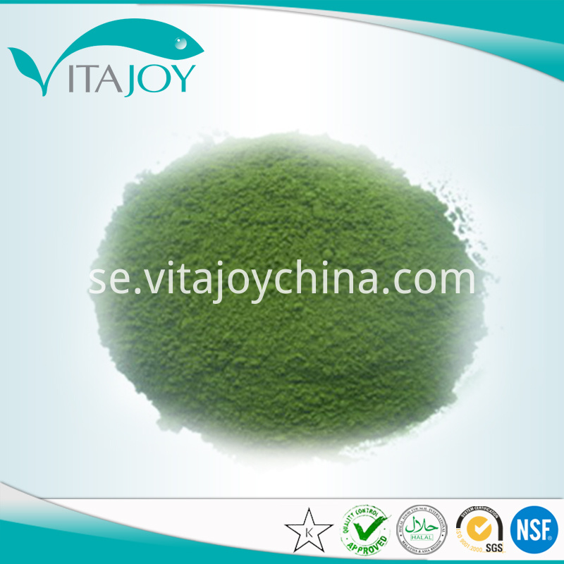 Organic green tea extract powder