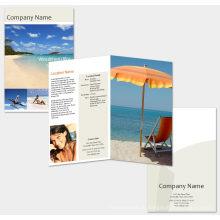 Brochure 2016 d'impression la plus chaude et dépliant, brochure, brochure