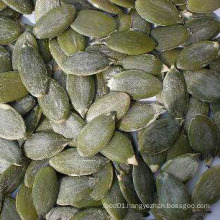 Good Quality Pumpkin Seeds Kernals