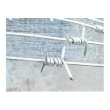 Alambre de púas de la venta directa de la fábrica / alambre de púas de la maquinilla de afeitar / alambre de púas barato