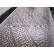 1220x2440x12mm madera contrachapada marina para el mercado de Omán