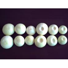 Proveedor de cebolla pelada nueva de 4 a 6 cm
