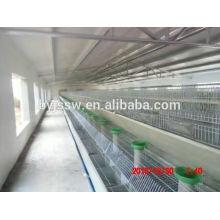 Kaninchen, der Ausrüstungs-industrielle Kaninchen-Käfige bewirtschaftet