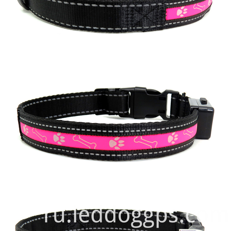 Led Shinning Dog Collar