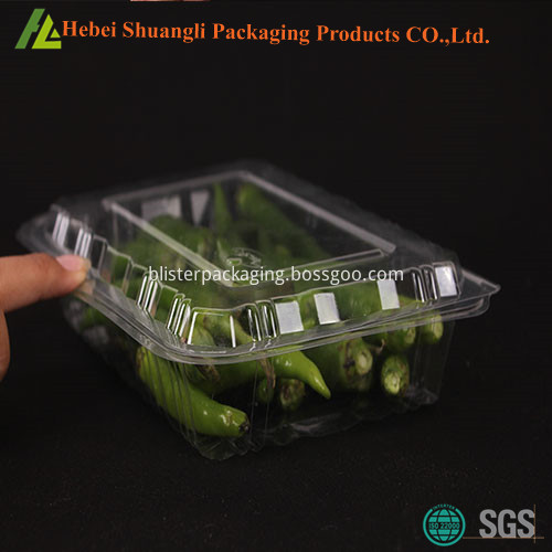 plastic vegetable packaging