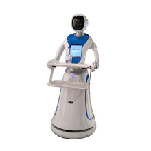 Dish Delivery Robot Humanoid Robot Waiter