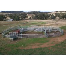 Bonito aspecto de ganado galvanizado Panel buena venta en el mercado Xm-04