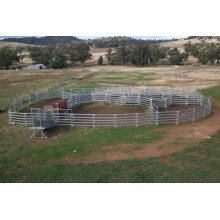Nice-Looking Galvanized Cattle Panel Good Sale in The Market Xm-04