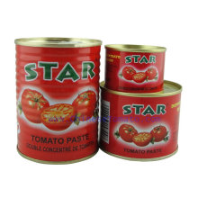 Star Canned Tomato Paste with High Quality From China