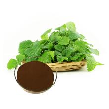 pó de extrato de erva-cidreira orgânico