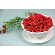 2016 Nueva cosecha Goji Berry