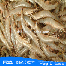 HL002 wild catch frozen fresh red shrimp