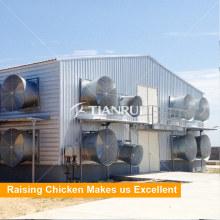 Ventilador automático da exploração avícola para a gaiola da galinha de grelha