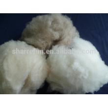 100% fibra de cachemira de lana de cabra depilada en blanco sin procesar