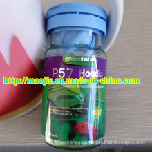 100% Safe and Strong Effect Natural Plant Hoodia Weight Loss Product for Slimming (MJ-240mg*30 caps)