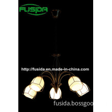 2014 New Modern LED Bright Chandelier (D-8122/5)