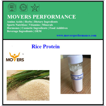 Hot Sale! High Purity Rice Protein