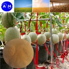Trace Element Amino Acid Chelate for Organic Fertilizer