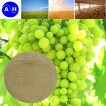 Compound Amino Acid Powder for Tomato Fertilizer