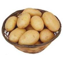 Kartoffel, frische chinesische Kartoffel