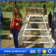 Xúc xích lồng A/H loại 3 tầng 4 cửa 96 loài chim trên tốt bán cho Afraica