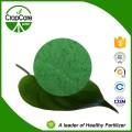 Customized 47% Fertilizer NPK 19-9-19 100 Water Soluble NPK