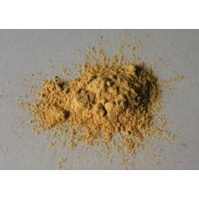 Polvo de extracto de Polypodium Leucotomos en venta superior (PLE), Triterpeno al 10%