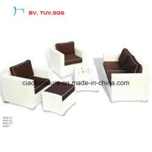 Whith Colour Home Furniture Rattan Sofa Set (9060)