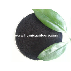 Sodium Humate Feed Additive For Animal
