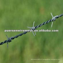 Double Twisted arame farpado / Thorn aço anping preço