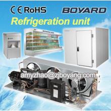Supermercado vitrina refrigerador y pantalla vitrina congelador con compresor horizontal unidades de refrigeración de condensación