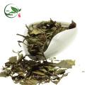 Organischer bester weißer Tee-Marken-weißer Tee