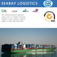 Shipping Container/ Freight Cost/Shipping Company/Shipping Agent From China