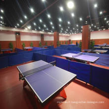 Revêtement de sol en PVC intérieur pour tennis de table