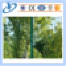Зеленый Голландии сварные сетки забор, овечья проволока / ПВХ покрытием сварные сетки