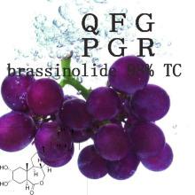 Hormona de planta CAS 72962-43-7 Brassinolide 98% Tc