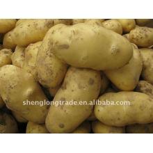 свежего картофеля с низкой ценой