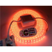 220V 110V 5050 Flexible LED Light NO Waterproof / Waterproof 60LEDs/m 5m/lot RGB / RGBW LED Strip light