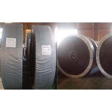 Завод по производству фосфатных удобрений (кислотостойкий / щелочной стойкий) Конвейерные ленты