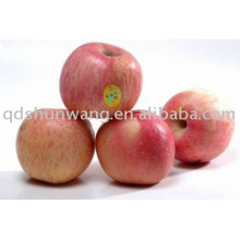 supply fresh fuji apple for high quantity