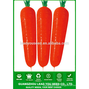 NCA012 Waiyan Black carrot seeds price china seeds