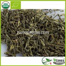 Sencha orgânico com vapor de chá verde