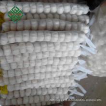 Laiwu Fresh Garlic 5.0cm para Temperos