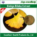 GINKGO BILOBA-EXTRACT