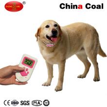 China, el más innovador traductor de idiomas caninos