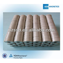 Strong Stator Ring Industrial Magnet