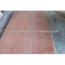 linyi commercial plywood/bulk plywood board