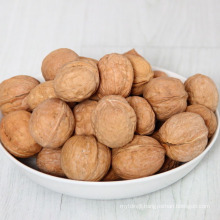 natural walnuts dried in shell for wholesale